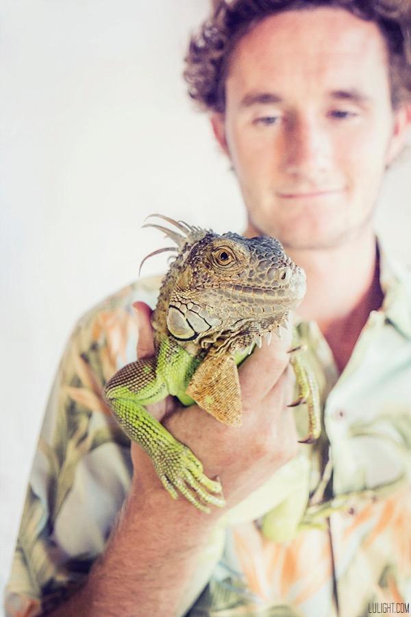 green iguana pet photography, Lulight photography